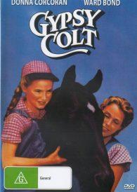 Gypsy Colt – Donna Corcoran DVD